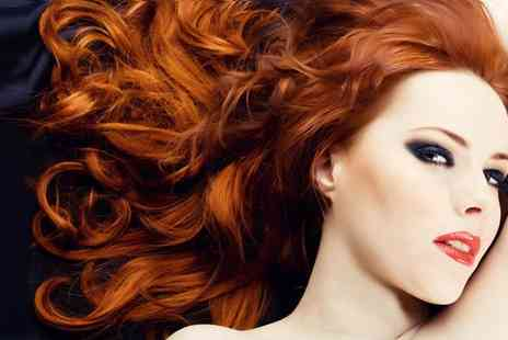 The Annex Hair and Beauty - Cut blowdry and a Tigi S Factor deep conditioning treatment - Save 50%
