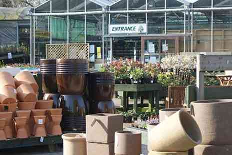 Southwell Garden Centre - Lunch For Two - Save 50%