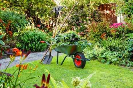 J Benson Landscapes - Two Hours Garden Maintenance - Save 50%