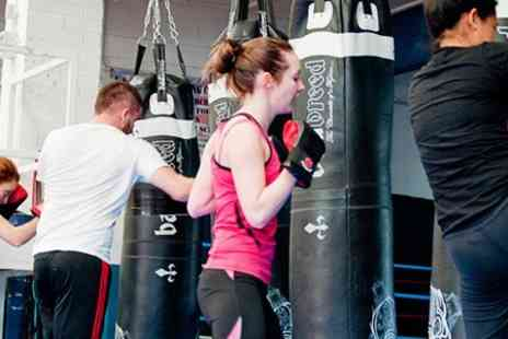 Fitter than Fit Bootcamp - Ten Muay Thai Boot Camp Sessions - Save 78%
