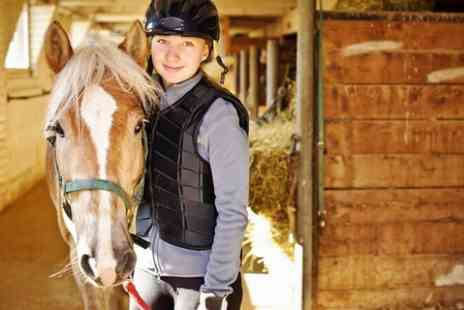 Durhams Farm Riding School - Two Horse Riding Lessons - Save 34%