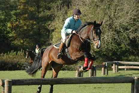 Quob Stables - Horse Riding and Grooming With Cream Tea - Save 28%