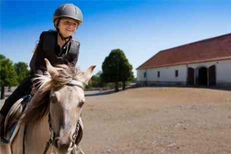 Bryerley Springs Farm - Two Riding Lessons For One - Save 58%