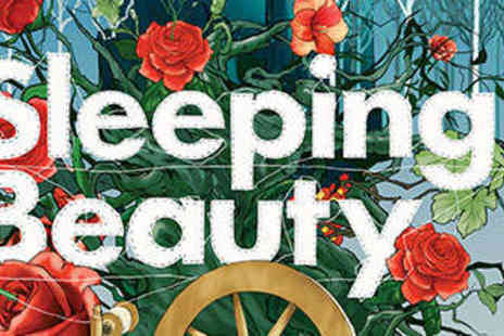 Park Theatre - One  Family Ticket  to Sleeping Beauty - Save 50%