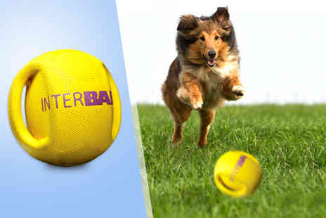 Monster Pet Supplies - Interball Dog Ball Toy  - Save 50%