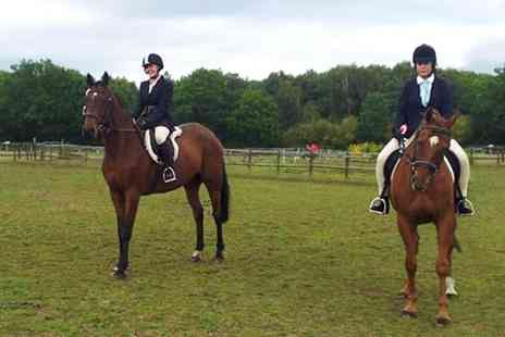 Chobham Equestrian Centre - Two Hour Experience For One - Save 37%