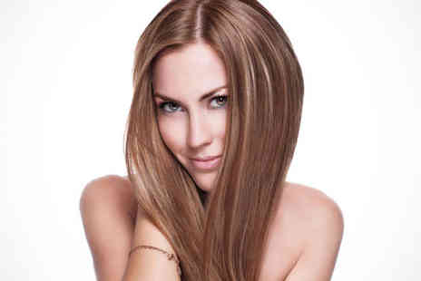 L.A. Hair Salon - Haircut, Blow Dry, and Conditioning Treatment - Save 62%