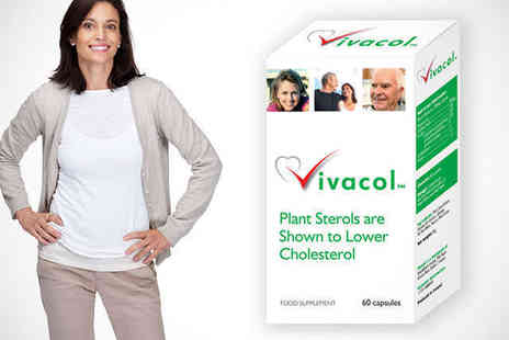Vivacol Plant Sterols from Just You - 60 Vivacol Supplements Containing Plant Sterols to Reduce Blood Cholesterol - Save 52%