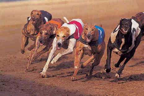 Poole Greyhounds - Entry to the Greyhound Racing with Racecard, Burger and Chips and Beer - Save 71%