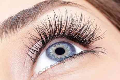 The Beauty Brow Bar - Eyelash Extensions With Eyebrow Tint - Save 58%