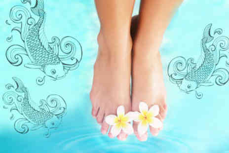 Ming Chen Clinics - £6 for a £20 Garra Rufa fish pedicure � 70% off a 35-minute treatment - Save 70%