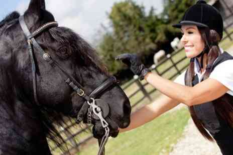 Brimington Equestrian Centre - Two Hour Horse Riding Introduction - Save 42%