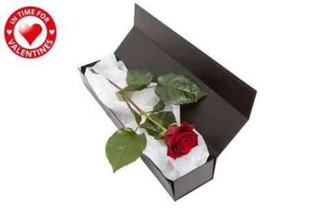 Flowers & Plants Direct - Premium Rose in a Box With Chocolates - Save 50%