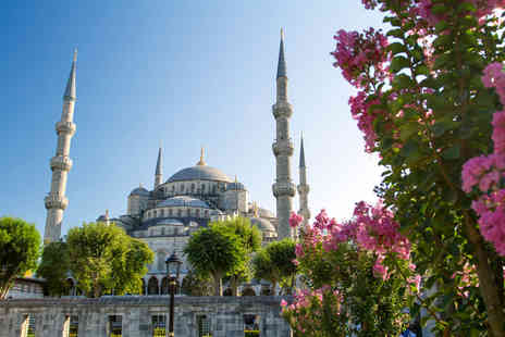 Secret Turkey - Eight day tour of Turkey including Istanbul Troy and Ephesus plus return flights - save 50% - Save 50%