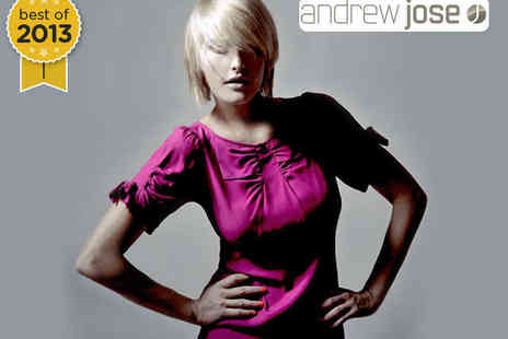 Andrew Jose - Haircut with T Section Highlights - Save 65%