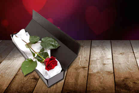 Flowers & Plants Direct - Red rose in a box with a box of chocolates - save 50%