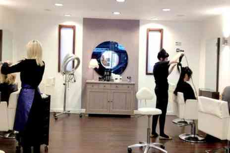 David Sebastian Salons - Restyle Cut Blow Dry and Hot Oil Treatment - Save 52%