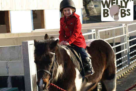 Wellybobs - Creepy Crawly or Pony Experience for a Child and Adult - Save 50%