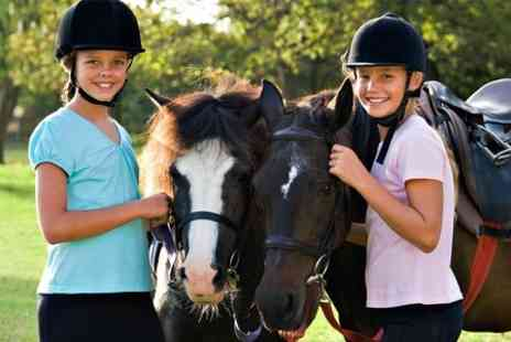 6 Ashes Riding Centre - Private Lesson, Pony Club or Party - Save 70%