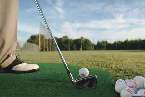 Greg Smith Golf - One Hour Long Drive Golf Lesson with Video Analysis - Save 81%