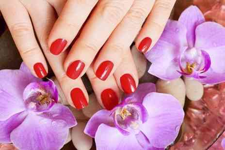 Perfect Nails - Shellac Manicure or Pedicure  - Save 50%