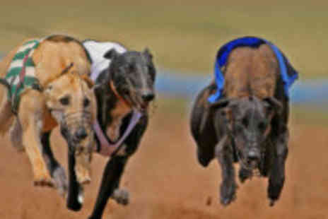 Kinsley Greyhound Stadium - Night out at the dog track - Save 55%