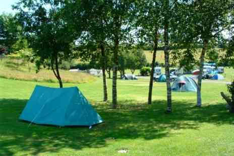White Hill Country Park - Two Night Camping Pitch For Up to Four in South Devon - Save 79%
