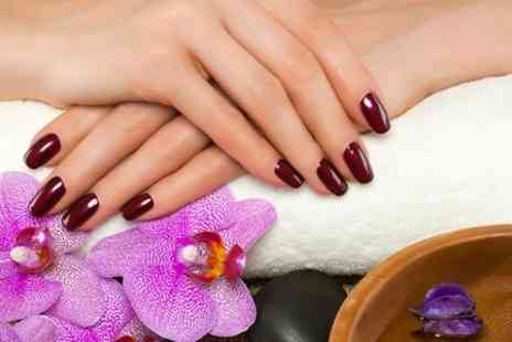 Pure Hair & Beauty - Shellac Manicure  - Save 64%