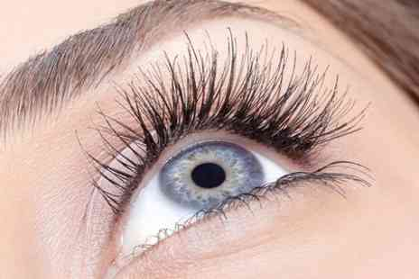 SEF Cardiff - Eyebrow and Lash Course  - Save 68%