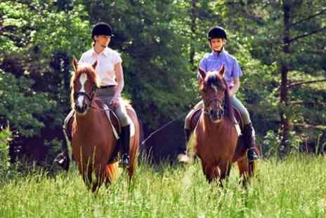 Matchmoor Riding Centre - Private Horse Riding Lesson Plus Moorland Trek - Save 51%