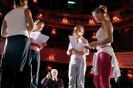 Hampstead Academy - One Day Acting Workshop for One - Save 79%