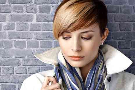 3D Hair and Beauty - Cut and Blow Dry  - Save 59%