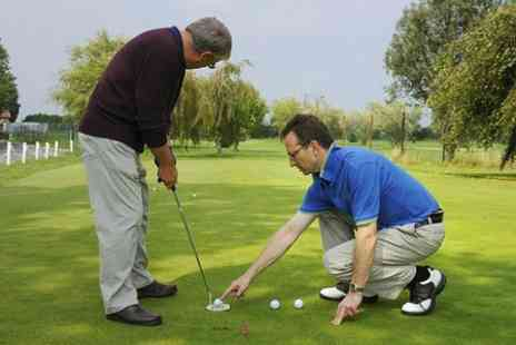 The Golf Swing Company - 45 Minute golf  Lesson  - Save 62%