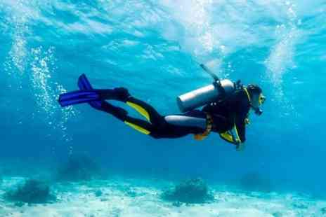 Teamscuba -  Introductory Dive  Or PADI Course  - Save 50%