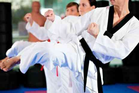 GKR Karate - Karate Classes for one  - Save 55%