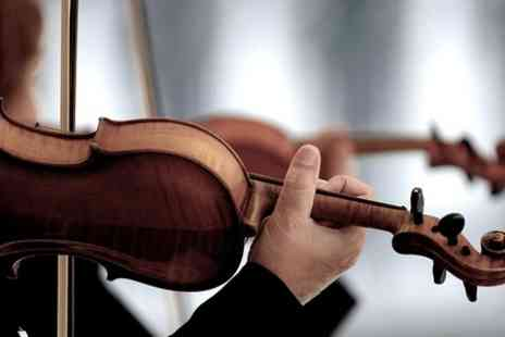 ViolinSchool -  Three Hour Introductory or Refresher Lesson - Save 56%