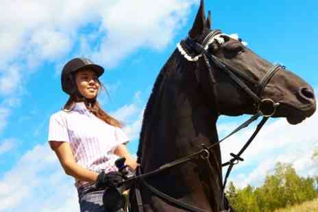 Fordbank Equi Centre - Indoor or Outdoor Horse Riding Lesson - Save 63%