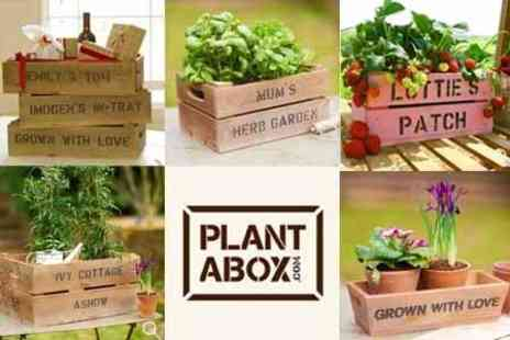 Plantabox.co.uk - £8 for £20 to Spend on Personalised Gift Crates - Save 60%