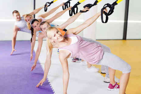 Zigs Exercise - Eight Suspension Circuit Classes - Save 61%