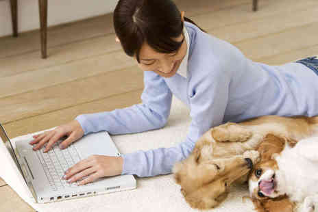 LD Learning - Online Dog Training or Dog Grooming Course - Save 92%