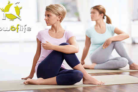 Flow Of Life - 2 in 1 facial and massage or a personal yoga class - Save 52%
