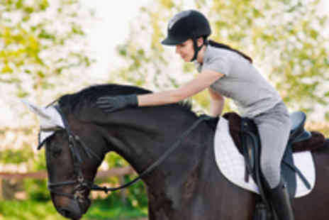 Godley Stud Riding School - One Hour Group Horse Riding Lesson for One  - Save 60%
