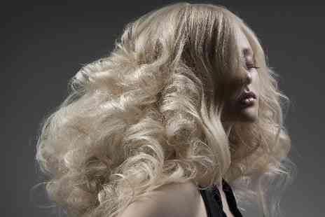 Mode Hair and Beauty - Haircut with LAnza Conditioning Treatment and Full Head Colour or Half Head Highlights - Save 57%