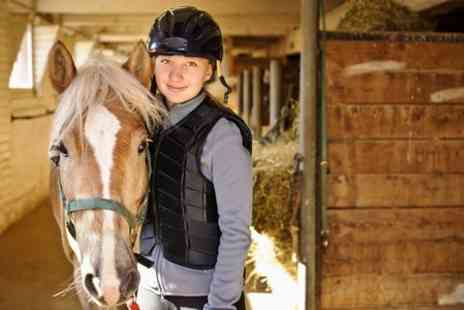 Lee Hill Riding School -  Childrens Pony Party  - Save 63%