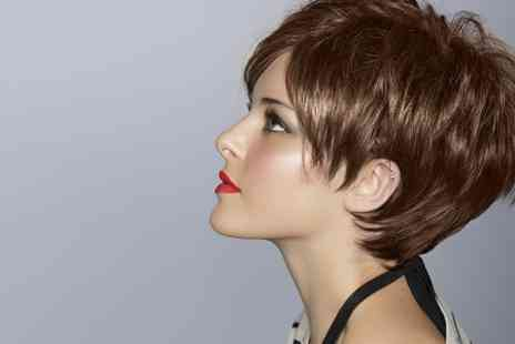 Trim n Tonic - Cut, Blow Dry and Conditioning Treatment - Save 53%