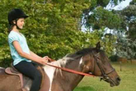Old Town Riding School - Two Hours of Private Horse Riding Lessons - Save 78%