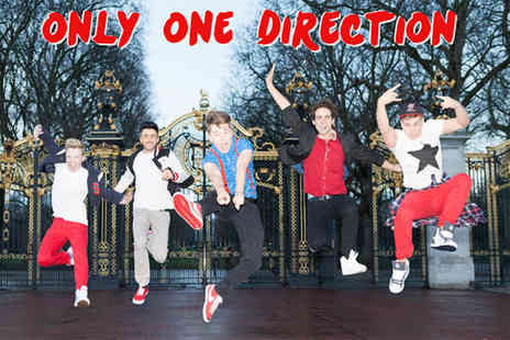 Only One Direction - One ticket to see the One Direction tribute act  - Save 50%