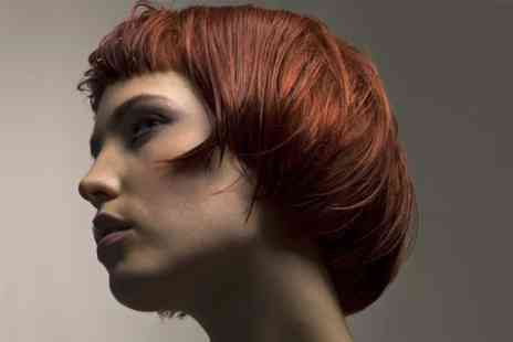 Elvissa - Cut, Blow-Dry and Treatment  - Save 72%