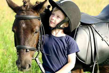 Old Bexley Stables - Childrens Pony Experience For One  - Save 50%