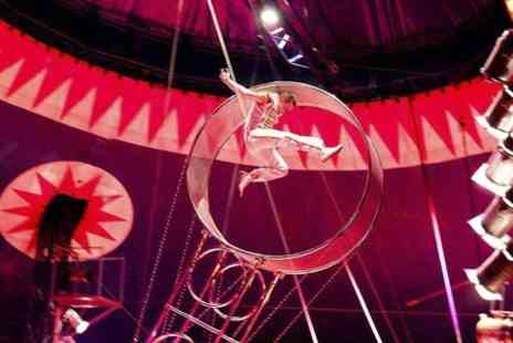 Circus Funtasia - Comedy and aerial acts Ticket  - Save 50%